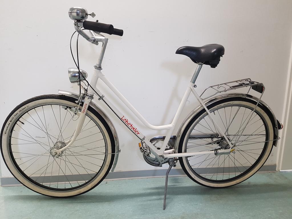 Außergewöhnlich Upcycling Fahrrad Referenz Von Klassischer Damenrahmen